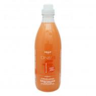 Шампунь Укрепляющий с протеинами риса. Апельсин-корица Dikson ONE'S SAMPOO FORTIFICANTE 1000мл: фото